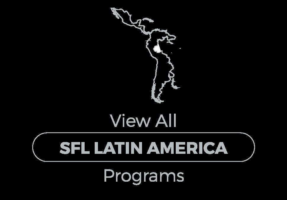 programregionalbuttons_latinam